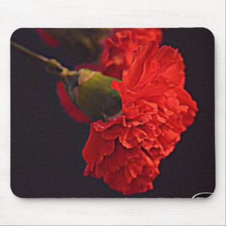 Ohio Red Carnation Mouse Pad
