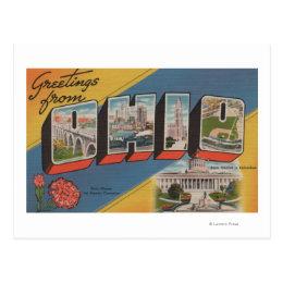 Ohio (State Capital/Flower) - Large Letter Scene Postcard