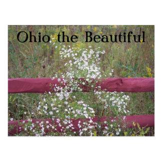 Ohio the Beautiful, 2 Postcard