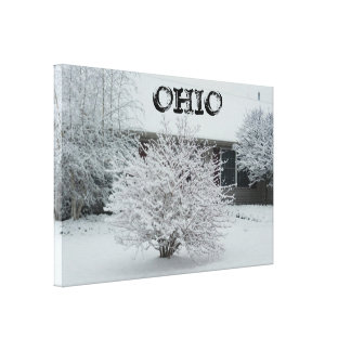 OHIO WITH SNOW canvas