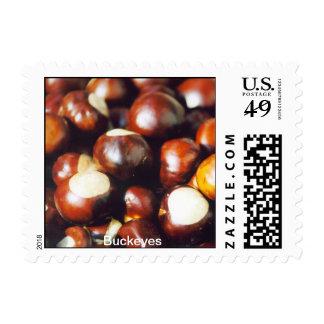 OhioBuckeyes Postage Stamps
