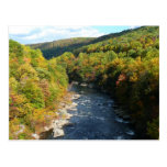 Ohiopyle River in Fall I Pennsylvania Autumn Postcard