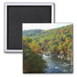 Ohiopyle River in Fall II Pennsylvania Autumn Magnet