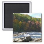 Ohiopyle River Rapids in Fall Pennsylvania Autumn Magnet
