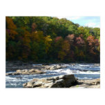 Ohiopyle River Rapids in Fall Pennsylvania Autumn Postcard