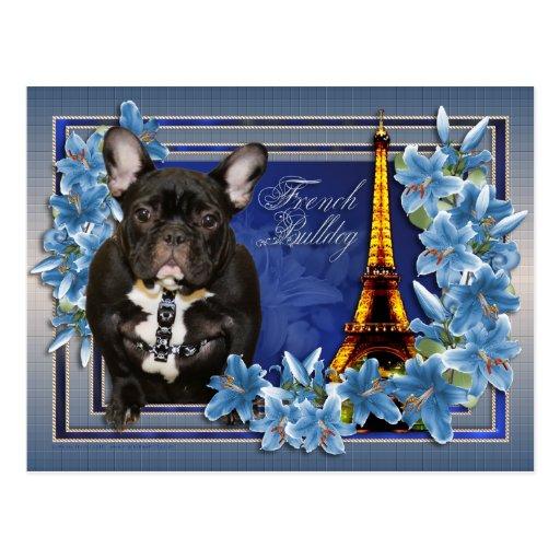 OhLaLa French Bulldog Postcards