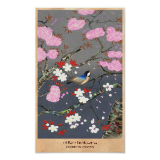 Ohno Bakufu Cherry Blossoms bluebird shin hanga Posters
