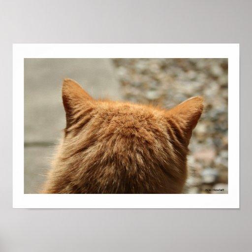 Oídos bonitos del gatito de Niki Póster