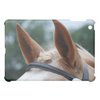 oídos del caballo