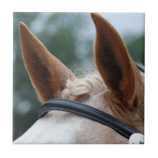 oídos del caballo azulejo cuadrado pequeño