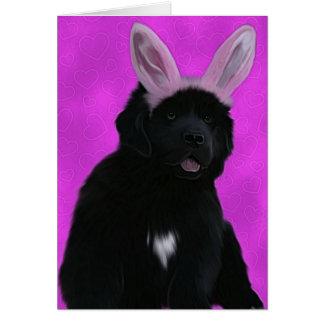 Oídos del conejito tarjeta de felicitación