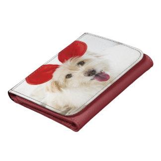 Oídos del juguete del perro que llevan en cama