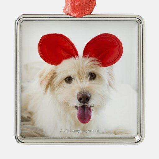 Oídos del juguete del perro que llevan en cama adorno navideño cuadrado de metal