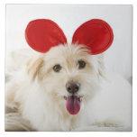 Oídos del juguete del perro que llevan en cama azulejo cuadrado grande