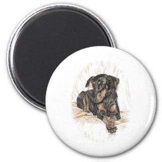 Oídos naturales del perro del Doberman Imán De Frigorífico