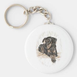 Oídos naturales del perro del Doberman Llavero