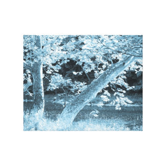 Oil Creek Trees Canvas Print