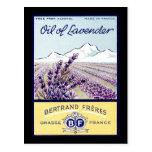 Oil of Lavender - Grasse France Postcard