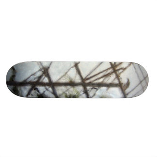 """Oil Painting """"Crow"""" HDR Toning Skateboard"""