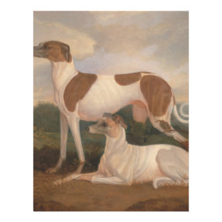 """oil paintings of greyhounds 8.5"""" x 11"""" flyer"""