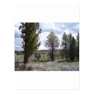 Oil Pastel Trees Postcard