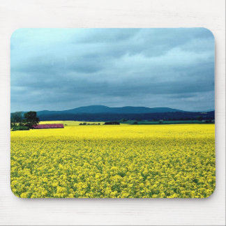 Oil-seed rape, Angus, Scotland at the Cornish Rivi Mouse Pads