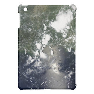 Oil spreads northeast iPad mini case