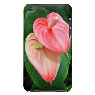 Oilcloth Flower Case-Mate iPod Touch Barely There iPod Touch Case-Mate Case