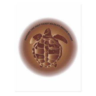 Oiled Kemp's Ridley Sea Turtle Postcard
