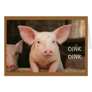 """OINK OINK=""""HAPPY BIRTHDAY"""" IN PIG LANGUAGE CARD"""