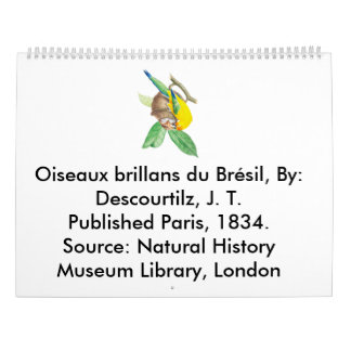 Oiseaux brillans du Brésil Calendar