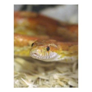 oj the snake letterhead