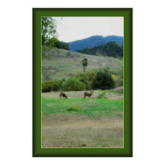 Ojai Deer Poster with Customizable Frame Color