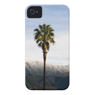 Ojai Palm Case-Mate iPhone 4 Case