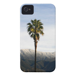 Ojai Palm iPhone 4 Case