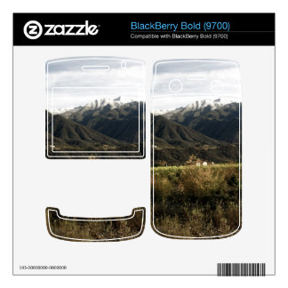 Ojai Valley With Snow Decal For BlackBerry