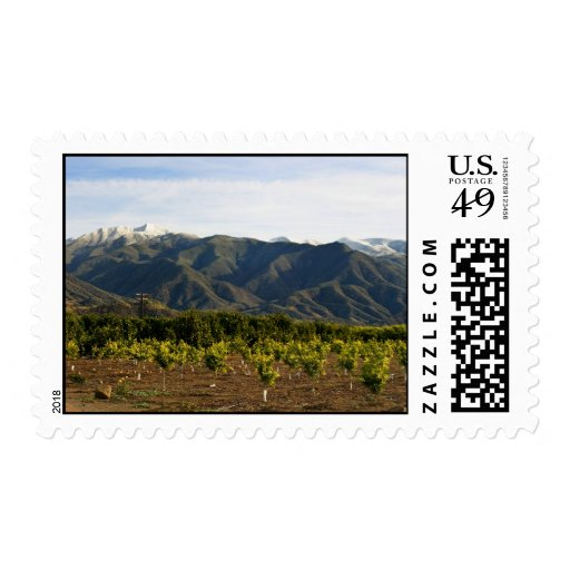 Ojai Valley With Snow Stamps
