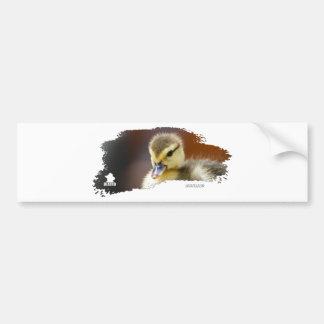 Ojatro Duckling 01 Bumper Stickers