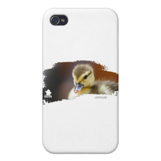 Ojatro Duckling 01 iPhone 4/4S Cover