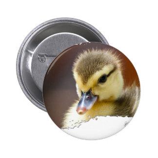 Ojatro Duckling 01 Pinback Buttons