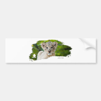 Ojatro Lion Cub 01 Bumper Stickers