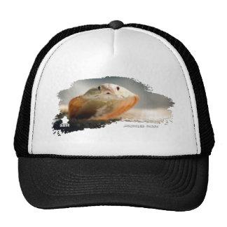 Ojatro Monocled Cobra 01 Trucker Hat