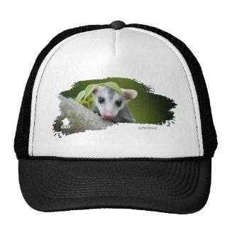 Ojatro Opossum Baby 01 Hats