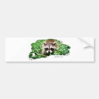 Ojatro Raccoon Kit 01 Bumper Stickers