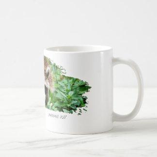 Ojatro Raccoon Kit 01 Mug