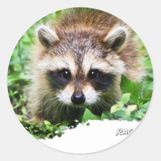 Ojatro Raccoon Kit 01 Round Stickers