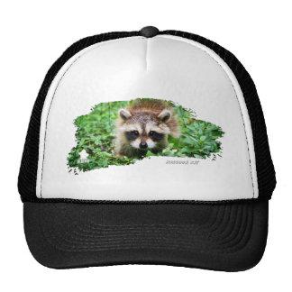 Ojatro Raccoon Kit 01 Trucker Hat