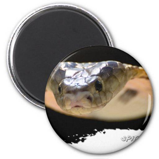 Ojatro Spitting Cobra 01 2 Inch Round Magnet