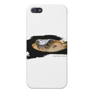 Ojatro Spitting Cobra 01 Cover For iPhone SE/5/5s