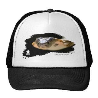 Ojatro Spitting Cobra 01 Trucker Hat